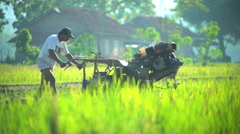 Motor driven cultivator in rice field operated by Indonesian man Java Stock Footage