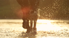 CLOSE UP: Detail of water drops sprinkling while big horse walking in the river Stock Footage