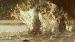 CLOSE UP: Detail of horse's legs splashing in refreshing river at golden sunset Stock Footage