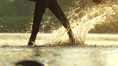 CLOSE UP: Strong dark brown horse walking and splashing in river in the nature Stock Footage