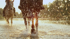 CLOSE UP: Two riders riding dark brown and grey horse along the river at sunrise Stock Footage