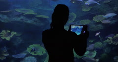 Woman with touch pad taking photos in oceanarium Stock Footage
