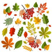 Collection beautiful colorful autumn leaves isolated on white background Stock Illustration