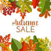 White blank on autumn background with maple leaves Piirros