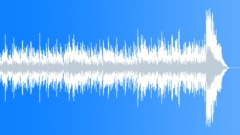 D Lukyanov - Amazonia (30-secs version) Stock Music