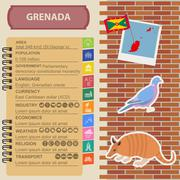 Grenada infographics, statistical data, sights. Antillean Armadillo, Grenadia Stock Illustration