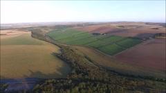 Aerial footage of UK vineyard in Sussex Stock Footage
