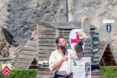 Bird of prey show in medieval castle of Bouillon, Belgium Stock Photos