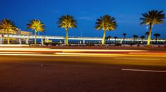 Biloxi, Mississippi Palm Trees and Traffic at Night Stock Photos