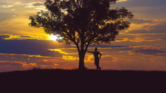 The man lean on the tree against the background of sunset. Time lapse Stock Footage