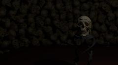Skull in Skull Room Stock Footage