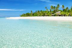 Fantastic turquoise beach with palm trees and white sand Stock Photos