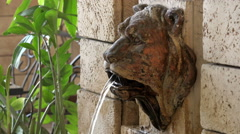The sculpture on the fountain wall stone lion's head which runs from the mouth Stock Footage