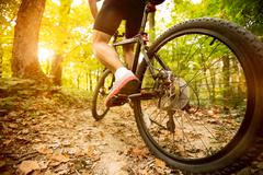 Cyclist riding mountain bike Stock Photos