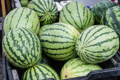 Watermelon on display in bulk at the market Stock Photos