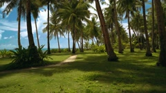 Pathway between park with palm trees close to beach Stock Footage