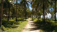 Driving on pathway between palm trees close to beach Stock Footage