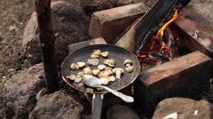 Fried Mushrooms in a Skillet at the Burning Fire in Nature Stock Footage