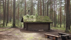Wooden House With a Green Roof in the Forest Stock Footage