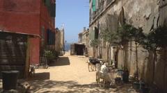 Cozy African street scene - Gore island, Dakar, Senegal Stock Footage