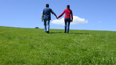 Couple hold hands and walks on a green grass to the horizon Stock Footage