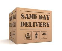 Same day delivery cardboard box concept 3d illustration Stock Illustration