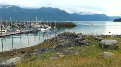 Haines - The Adventure Capital of Alaska - Travel Destination USA Stock Footage