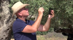 Mediterranean Farmer in a Olive Tree Plantation Check His Business Using Tablet. Stock Footage