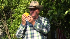 Countryside Farmer in His Daily Job Inspecting Orange Tree Plantation. Stock Footage