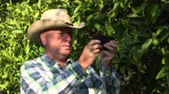Busy Farmer in Citrus Plantation Use Mobile Internet Connection Texting Message. Stock Footage