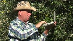 Olives Farm Worker Use Laptop Database in Analyzing Plants Growth Parameters.  Stock Footage