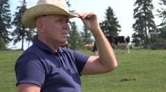 Farmer with Hand on Hat Gesture Inspecting Cows Herd on the Field.  Stock Footage
