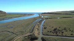 Mouth of a small river Stock Footage