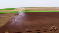 Typhon irrigation of young paprika field in spring. Aerial footage. Stock Footage