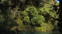 Beautiful river in Albania among forests and greenery Stock Footage