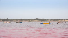 Pink lake Retba, salt collecting - Dakar region, Senegal, Africa Stock Footage