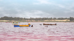 Pink lake Retba, salt collectors - Dakar region, Senegal, Africa Stock Footage