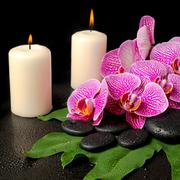 Spa set of zen stones with drops, blooming twig of stripped violet orchid (ph Stock Photos