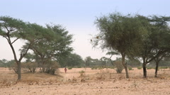 African savanna landscape - walking woman in the background Stock Footage