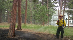 Firefighters mop up after a forest fire. Stock Footage