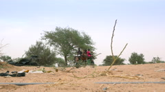 Trashy African savanna landscape - a cart moving in the background Stock Footage