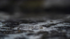 Water drop in puddle. Slow Motion. Stock Footage