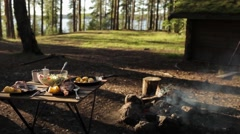 Dinner on the Nature of the Fire. Fish With Potatoes and Salad Stock Footage