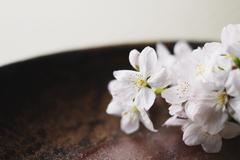 Japanese traditional pottery Stock Photos