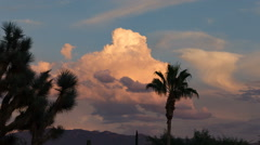 Hd 24p colorful sunset cloud sky behind palm joshua tree time lapse Arkistovideo