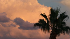 Hd 24p colorful sunset cloud sky behind palm time lapse tight Stock Footage