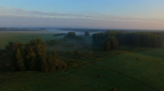Aerial view flying over the meadow and the sun rises from behind the trees Stock Footage