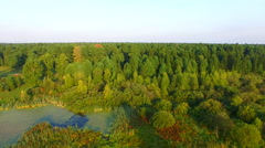 Aerial view of the edge of the cedar taiga and the haystack Stock Footage