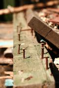 Tree, business, old, people, poor, building, world, man, rusty Stock Photos
