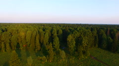 Aerial view of the vast pine taiga lift up Stock Footage